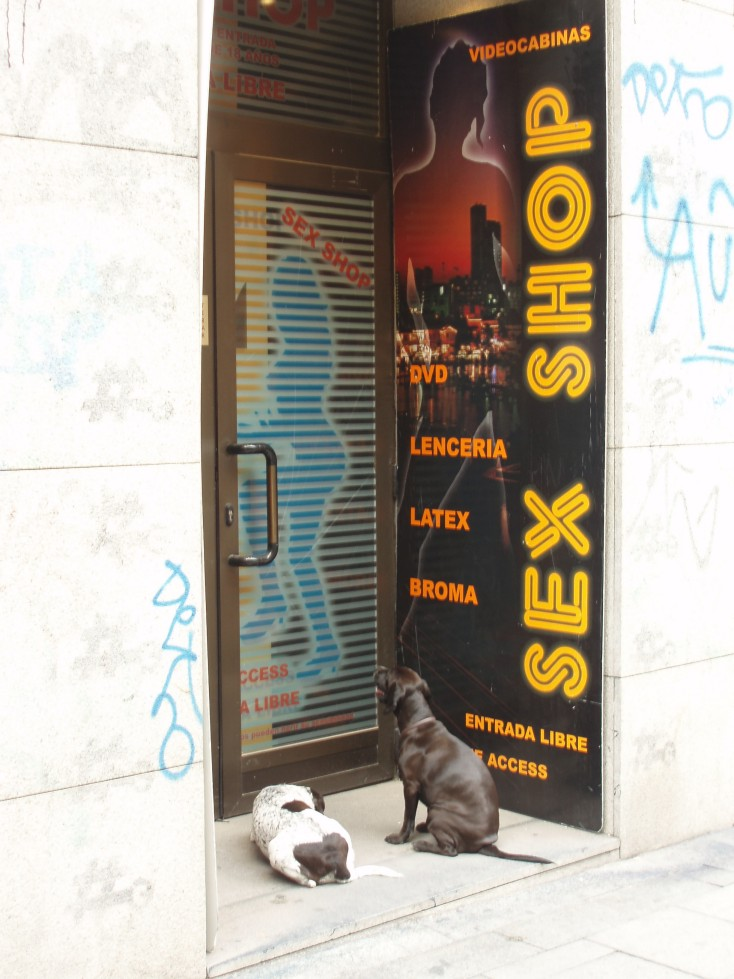 Madrid_dogs_3