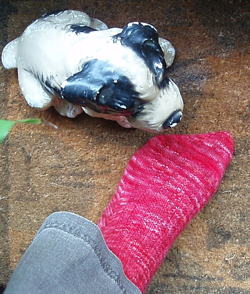 Red_sock_1